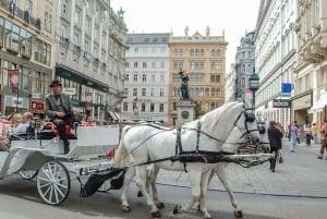 Vienna: Empress Sisi Walking Tour & Imperial Apartments