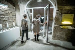 Vienna: Hidden Wine Cellars Tasting Experience