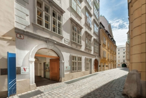 Vienna: Meet Mozart Private Guided Walking Tour