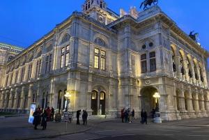 Vienna: Private Music Tour