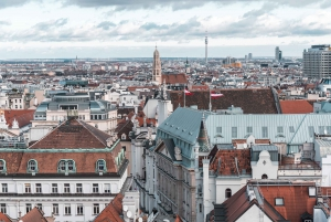 Vienna: Rooftop Guided Viewing with Drinks and Sweet