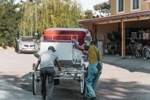 Vienna: Secrets of the Fiaker & Horse-Drawn Carriage Ride
