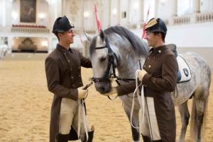 Vienna: Spanish Riding School Training