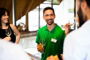 Wachau Valley Day Tour with Wine Tasting