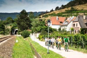 Wachau Valley Full–Day Small Group E-Bike Tour