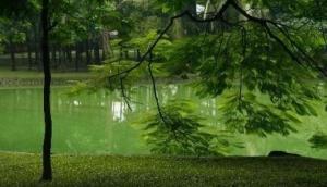 Botanical Gardens (Vuon Bach Thao)