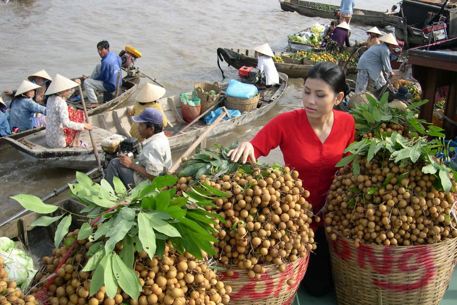 Cai Rang Floating Market and Mekong Delta Private Day Tour