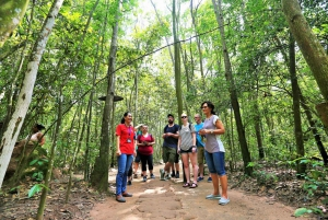 Cu Chi Tunnels Experience: Guided Tour from Ho Chi Minh City