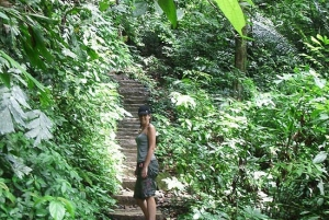 Cuc Phuong National Park 2-Day Wildlife Safari