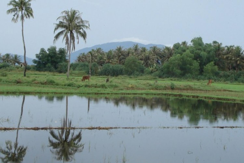 Dalat to Nha Trang 2-Day Biking Tour