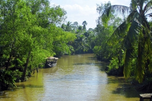 From Ho Chi Minh: Cu Chi Tunnels & Mekong Delta VIP