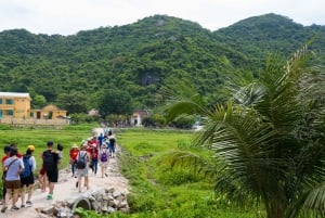 From Hoi An/Da Nang: Discover Cham island & Snorkeling