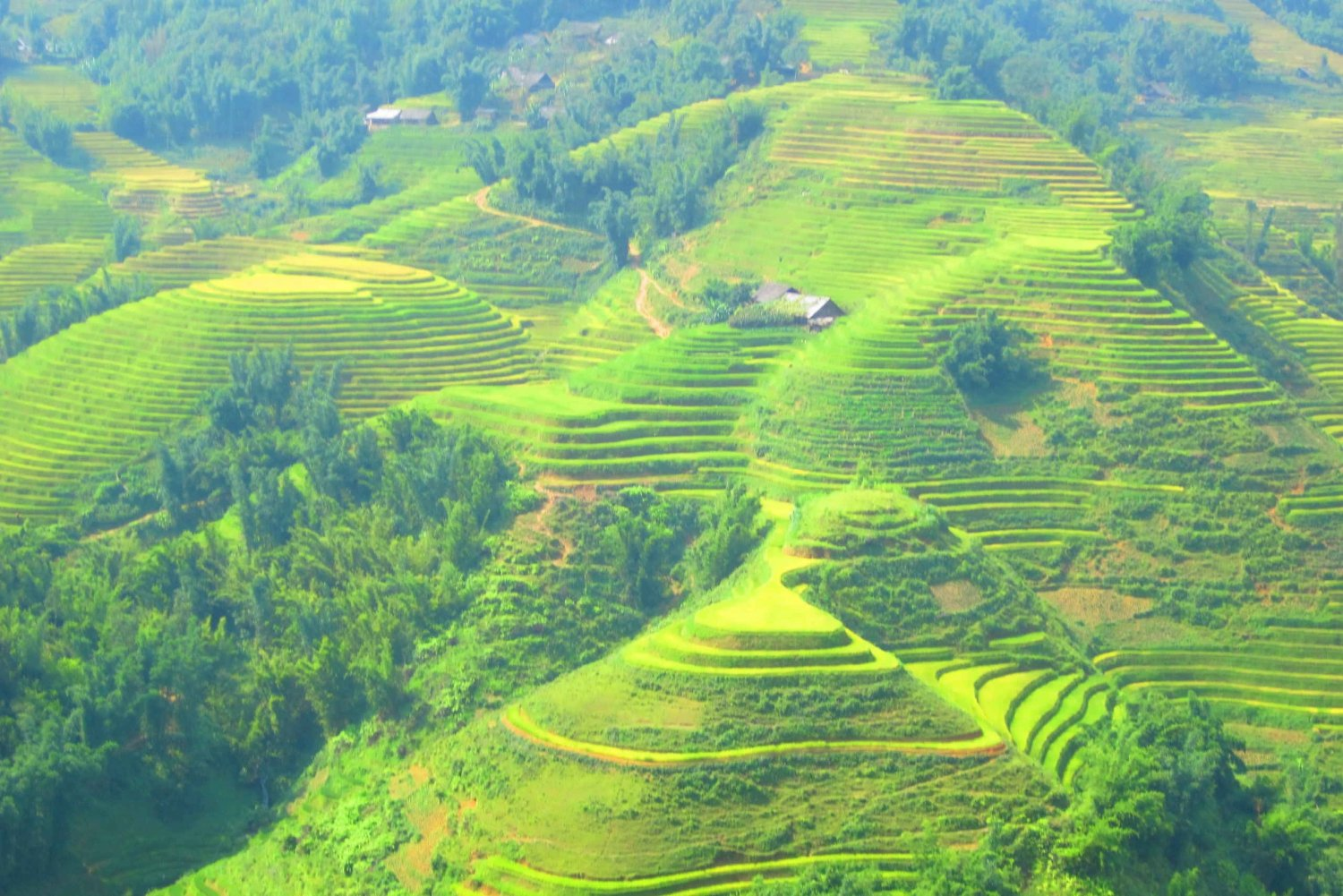 From Sapa: Waterfalls, Trekking and Tribal Villages Tour