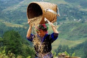 Hanoi: 3-Day Sapa Trek with Homestay