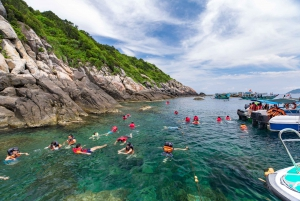 Hoi An: Boat Trip to the Cham Islands