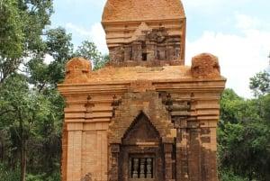 My Son Sanctuary Tour from Da Nang