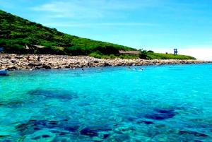 Nha Trang: Full-Day Fishing & Snorkeling w/ Barbecue