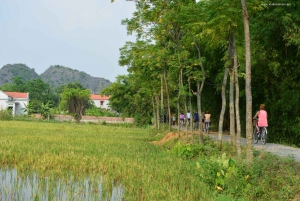 Ninh Binh: Hoa Lu, Am Tien Cave, Tam Coc, Bich Dong by Limo