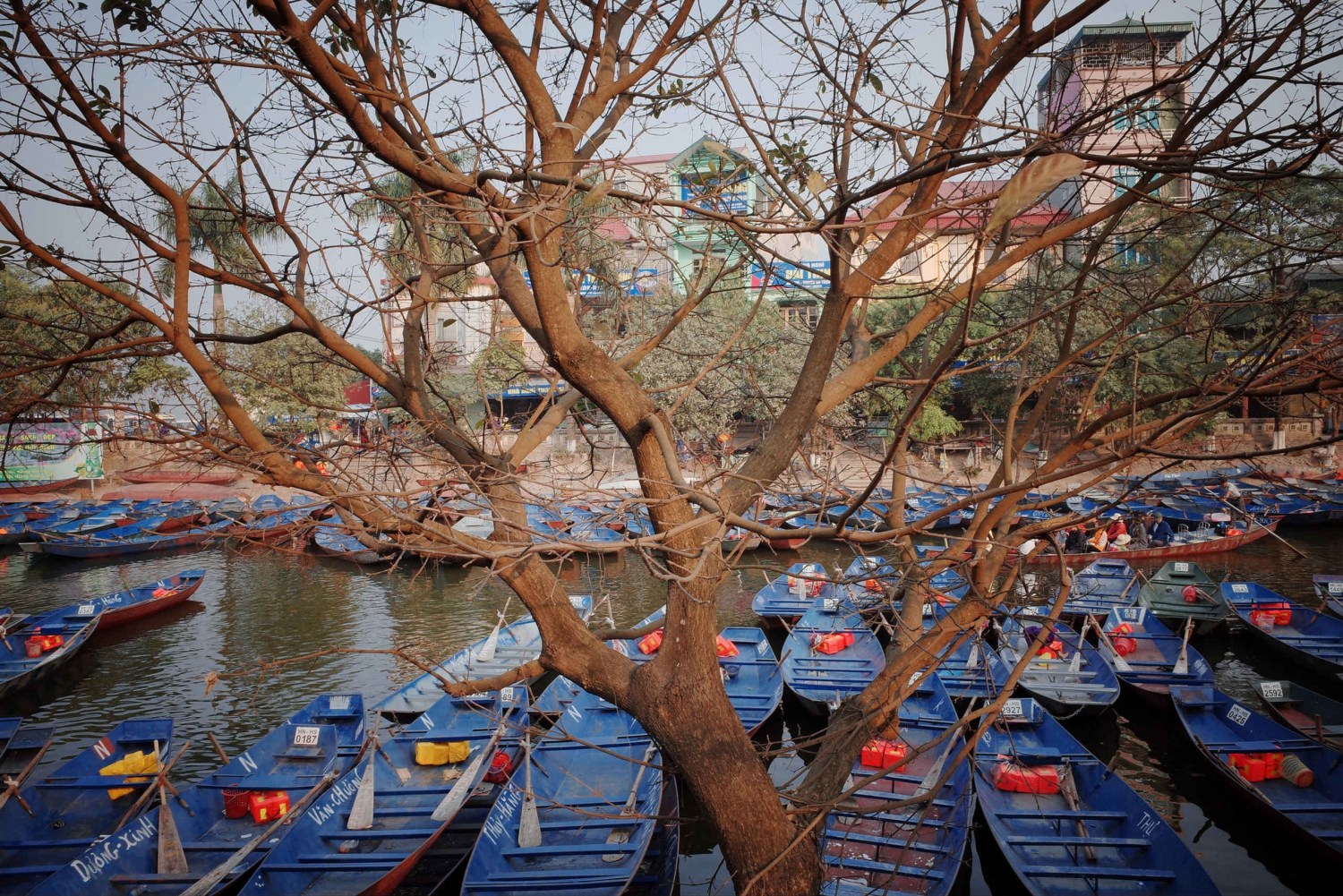 Perfume Pagoda Full-Day Private Tour from Hanoi