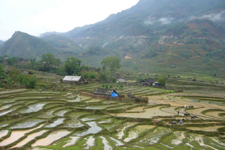Sapa: 1-Day Trek through Muong Hoa Valley & Villages