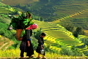 Sapa: 2 Day 1 Night Trip By Bus With Hotel Stay