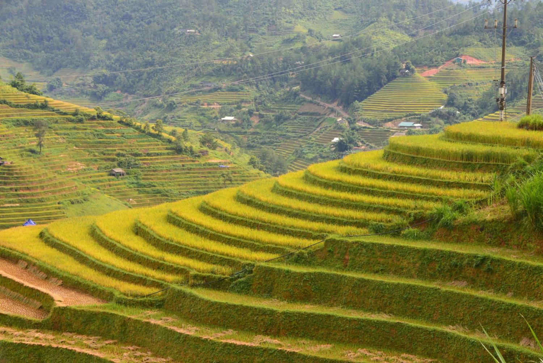 Trekking SAPA, Vietnam 3 Days 4 Nights - From Hanoi