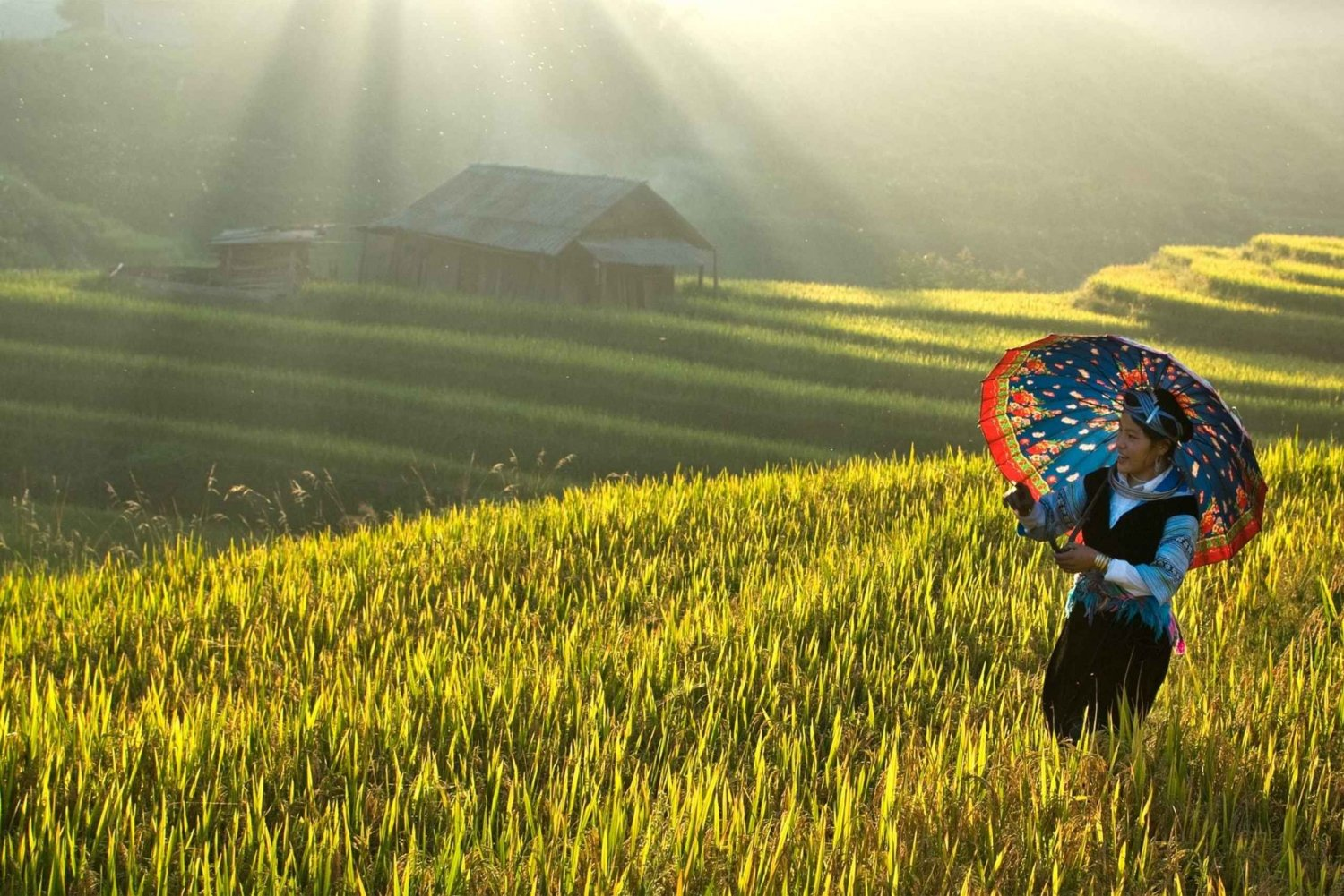 Two-Day Sa Pa Tour by Overnight Train from Hanoi
