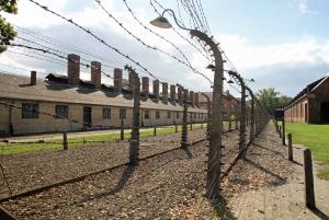 Auschwitz-Birkenau and Krakow Private Tour from Warsaw