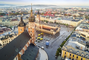 From Auschwitz and Krakow Low Cost Tour with Pickup