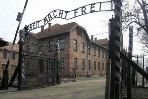 From Auschwitz and Krakow Old Town Private Tour
