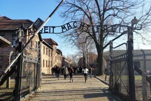 From Auschwitz-Birkenau and Krakow Private Day Trip