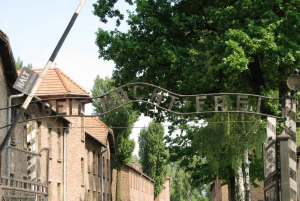 From Auschwitz-Birkenau Small Group Tour with Lunch