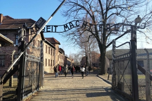 From Auschwitz-Birkenau Tour with Private Transfer