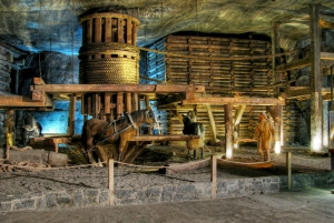 From Krakow City Day Tour with Salt Mine Visit