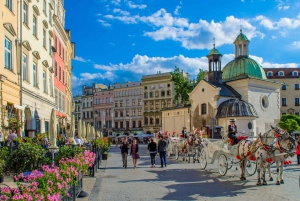 From Krakow Guided Private Tour with Transport