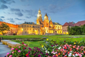 From Krakow Sightseeing Tour by Express Train
