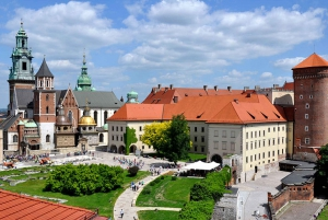 From Krakow & Wieliczka Small Group Tour with Lunch
