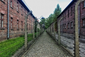 From Warsaw: Auschwitz and Krakow Old Town Private Tour