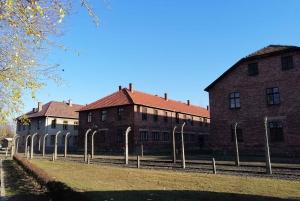 From Warsaw: Auschwitz-Birkenau and Krakow Private Day Trip