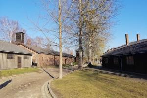 From Warsaw: Auschwitz-Birkenau Tour with Private Transfer