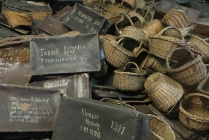 From Warsaw: Auschwitz Day Tour with Lunch
