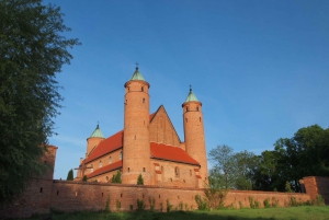 From Warsaw: Chopin & Masovian Country 1-Day Tour with Lunch