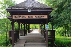 From Warsaw: Small-Group Tour to Bialowieza National Park