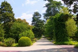 From Warsaw: Tour to Chopin's Birthplace - Żelazowa Wola