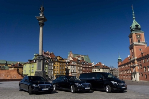 History and Modernity City Tour by Private Car