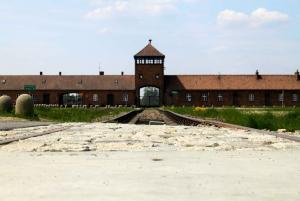 Kraków and Auschwitz-Birkenau Full-Day Trip