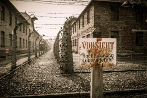 Krakow and Auschwitz Small-Group Tour from Warsaw with Lunch