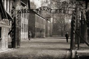 Memorial and Museum Auschwitz-Birkenau: Private Day Tour