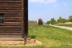 Warsaw: Kraków and Auschwitz-Birkenau Full-Day Trip