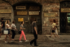 Warsaw: Private City Tour in Nysa 522